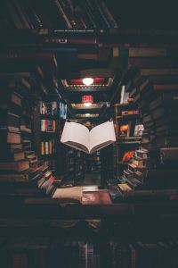 I love reading more than anything.  Books can bring us to magical places and provide hours of entertainment.  Let me share some of my favorites with you.